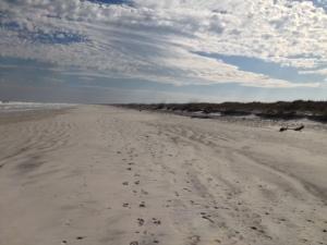 photo Talbot beach 2